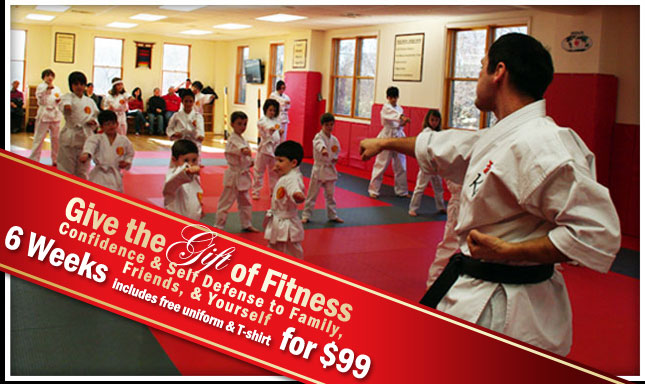 KI Martial Arts - 6 Weeks for $99!
